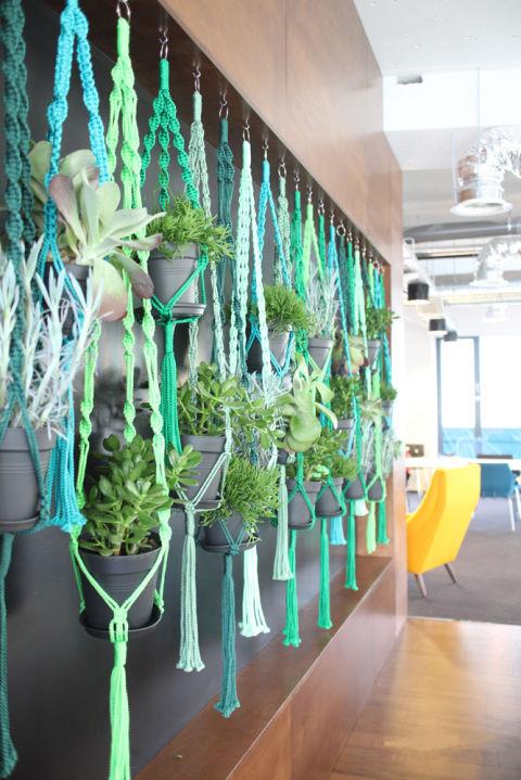 Giardino verticale fai da te scopri come realizzarlo - Giardino verticale fai da te ...