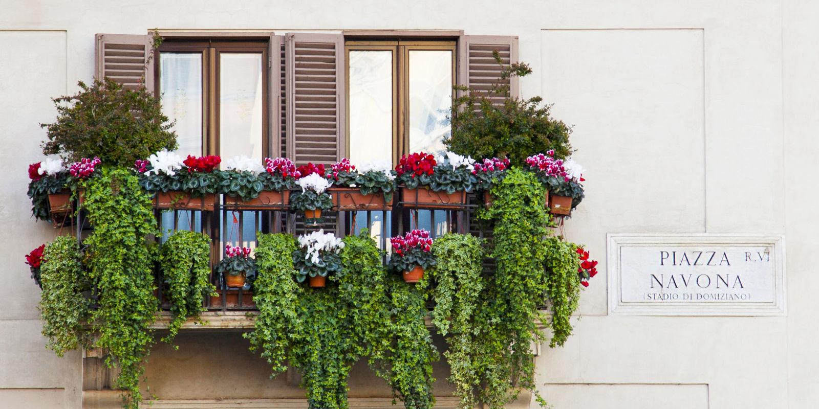 10 fiori profumatissimi per colorare il tuo terrazzo for Fiori da balcone perenni